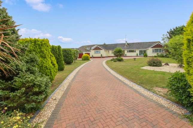 Thumbnail Detached bungalow for sale in Bascombe Close, Churston Ferrers, Brixham
