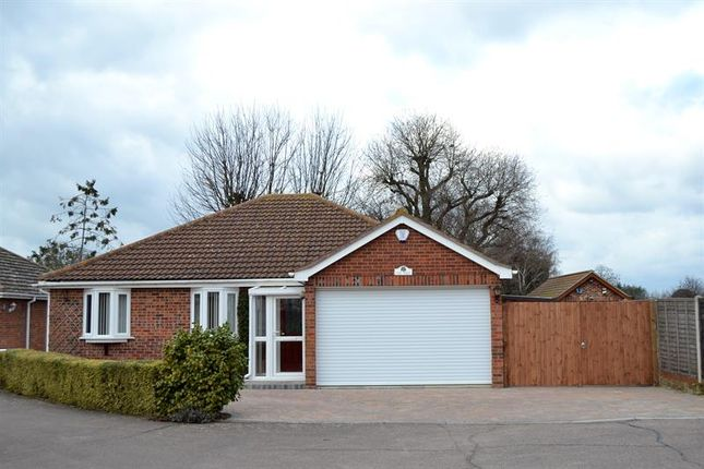 Thumbnail Detached bungalow for sale in Old School Lane, Elmstead