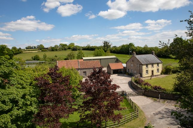 Thumbnail Detached house for sale in Thrupe Lane, Masbury, Wells, Somerset
