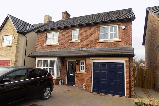 Thumbnail Detached house to rent in Hadrian Way, Houghton, Carlisle, Cumbria, Olu