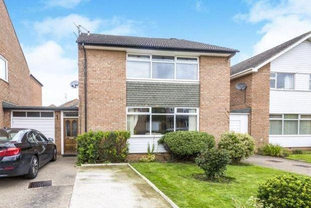 Thumbnail Semi-detached house to rent in Hummersknott Avenue, Darlington