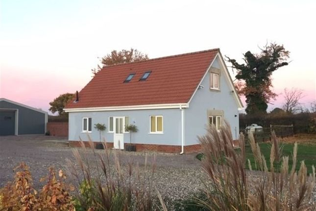 Thumbnail Detached house to rent in Park Lane, Reymerston, Norwich