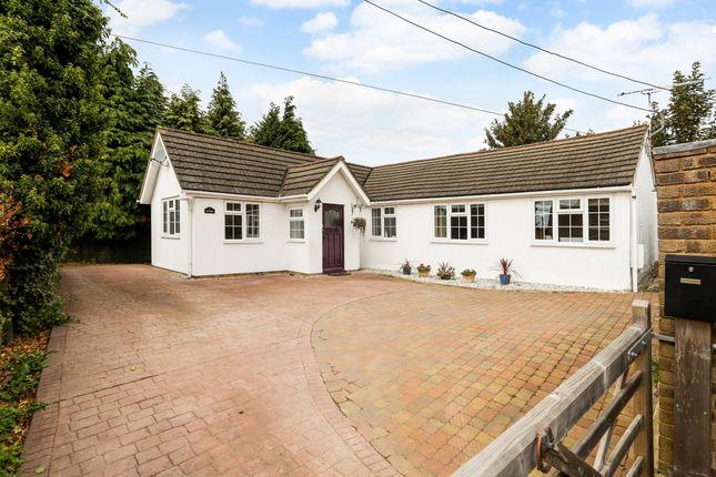 Thumbnail Bungalow to rent in Hereford Lane, Farnham