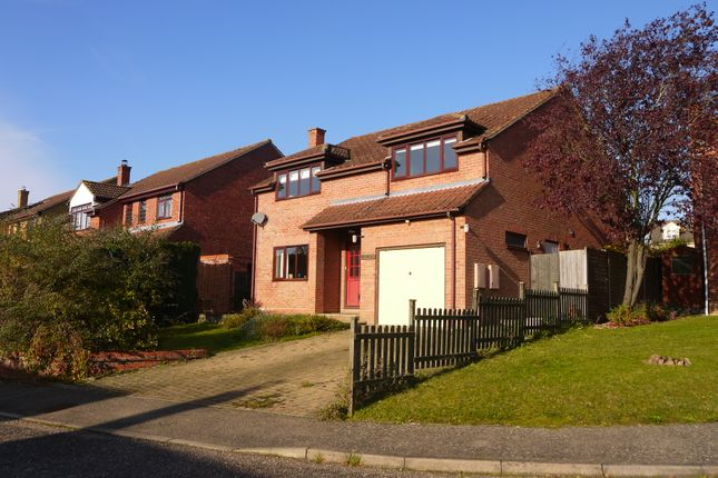 Thumbnail Detached house to rent in Lombardy Road, Sudbury, Suffolk