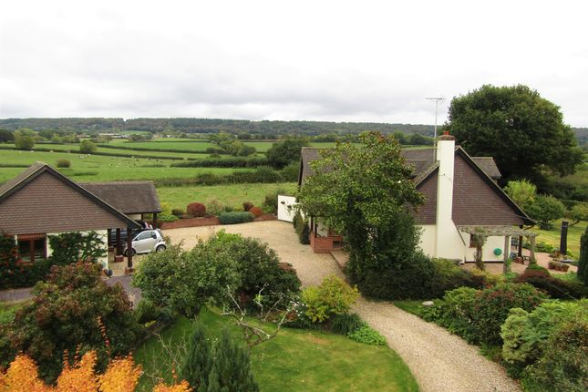 Thumbnail Detached house for sale in Gerway Lane, Ottery St. Mary