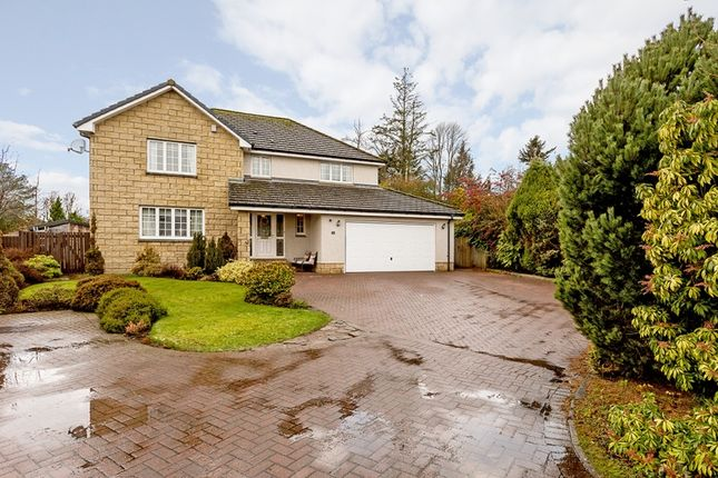 Thumbnail Property for sale in Fyfe-Jamieson, Forfar, Angus