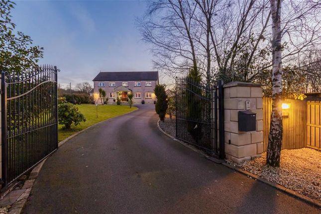 Thumbnail Detached house for sale in Bonnybridge