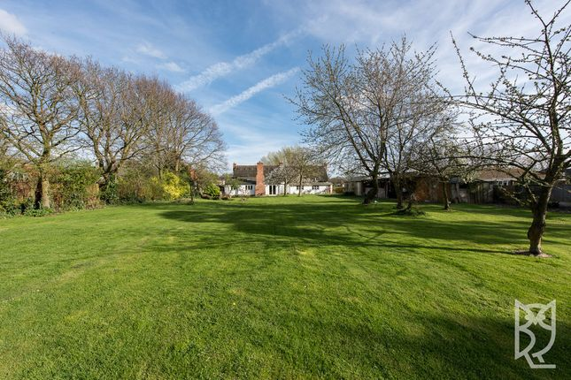 Thumbnail Detached house for sale in Dead Lane, Ardleigh, Ardleigh