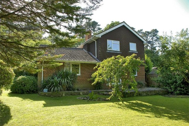 Thumbnail Detached house for sale in 12A Honey Lane, Burley, Ringwood
