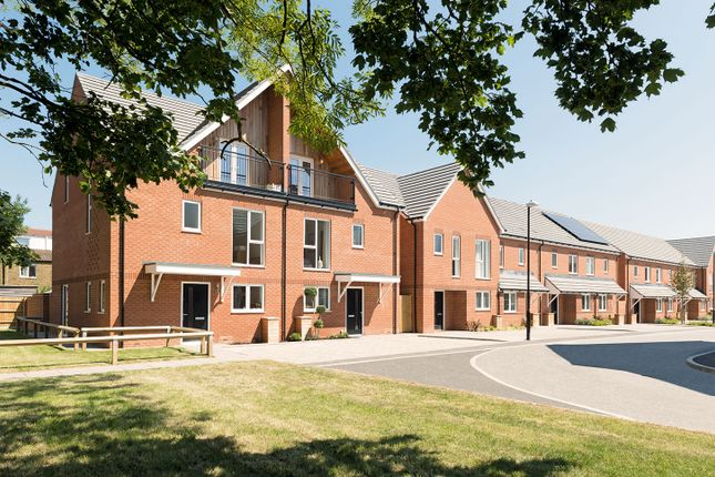 "Thumbnail Semi-detached house for sale in ""The Walnut"" at Connolly Way, Chichester"