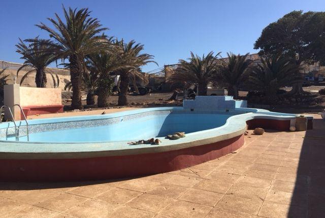 Thumbnail Finca for sale in El Medano, Granadilla De Abona, Tenerife, Canary Islands, Spain