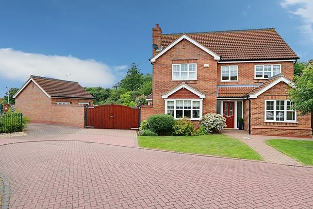 Thumbnail Detached house for sale in Sandpiper Way, Barton-Upon-Humber