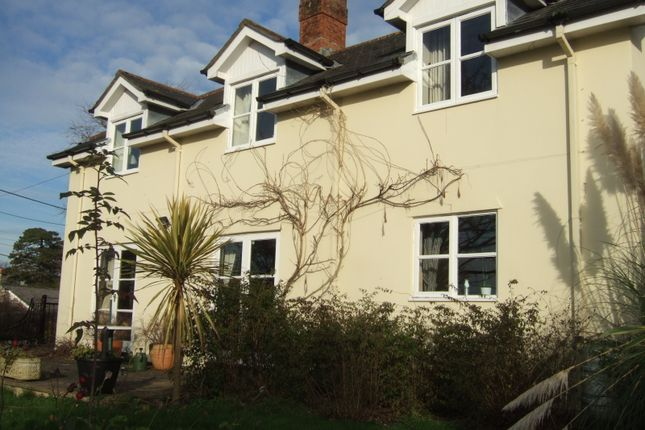Thumbnail Detached house to rent in Doatshayne Lane, Musbury, Axminster