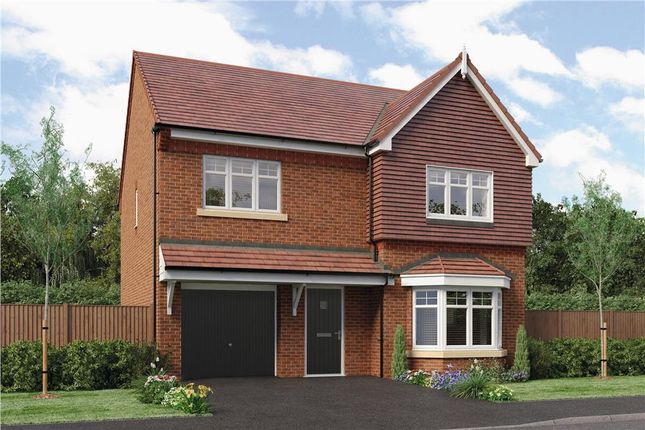"Thumbnail Detached house for sale in ""Hollingwood"" at Oteley Road, Shrewsbury"