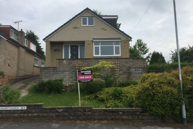 Thumbnail Bungalow for sale in Hawthorn Avenue, Brookhouse, Lancaster
