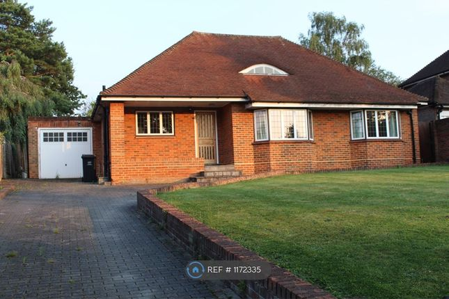 4 bed bungalow to rent in Stone Road, Bromley BR2