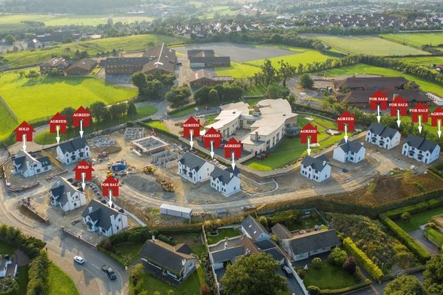 Thumbnail Property for sale in The Oaks, Newry