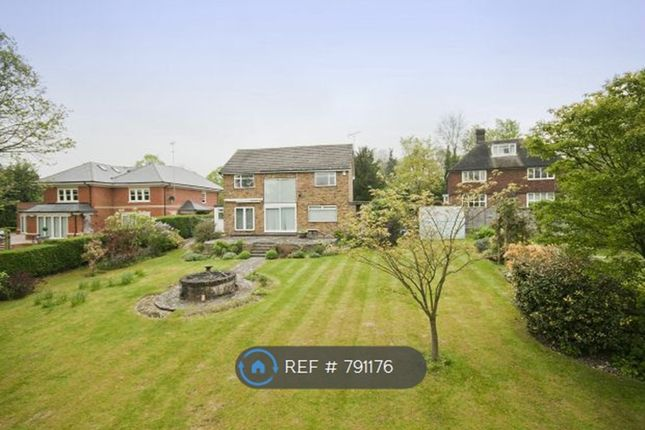 Thumbnail Detached house to rent in Nancy Downs, Watford