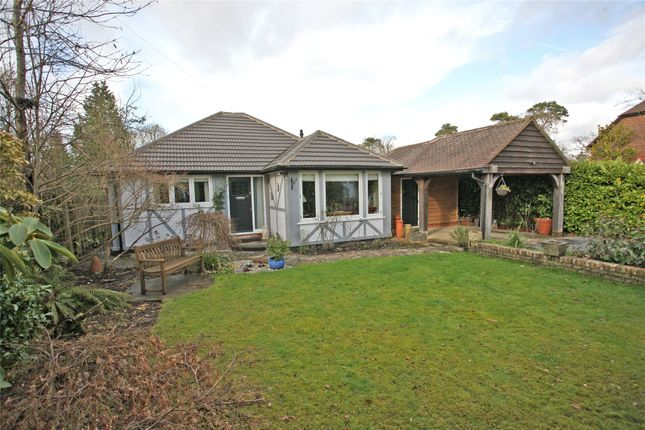 Thumbnail Detached bungalow for sale in Boundstone Road, Wrecclesham, Farnham, Surrey