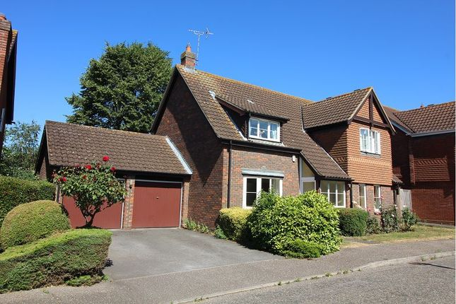 Thumbnail Detached house for sale in Canterbury Way, Chelmsford