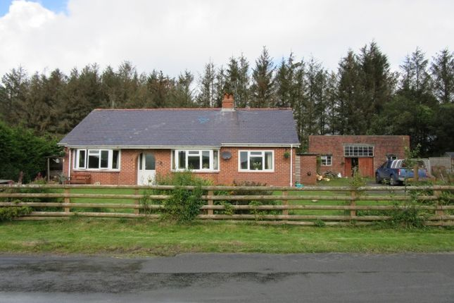 Thumbnail Equestrian property for sale in Pant-Y-Dwr, Rhayader