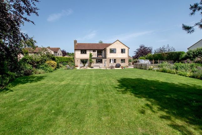 Thumbnail Detached house for sale in Isle Brewers, Taunton
