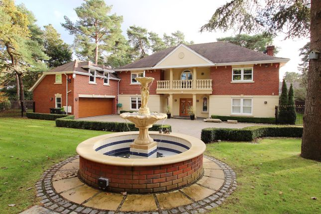 Thumbnail Detached house for sale in Avon Castle Drive, Avon Castle, Ringwood