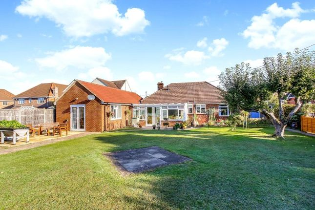 Thumbnail Detached bungalow for sale in Pack Lane, Basingstoke