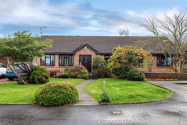 Thumbnail Detached bungalow for sale in Reilly Gardens, Bonnybridge, Stirlingshire