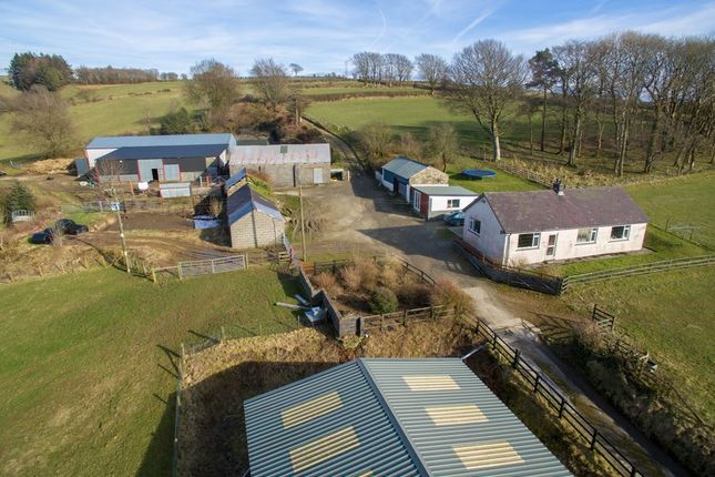 Thumbnail Land for sale in Talgarreg, Llandysul