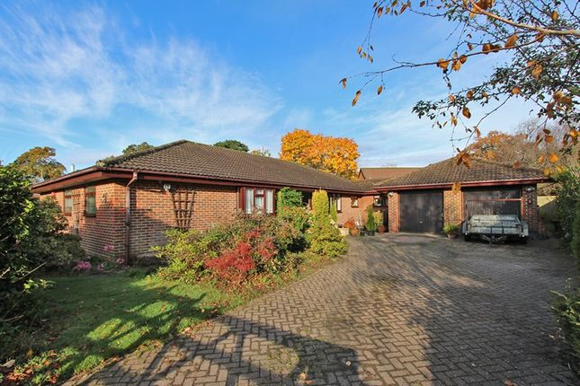 Thumbnail Bungalow for sale in Forest Glade Close, Brockenhurst, Hampshire