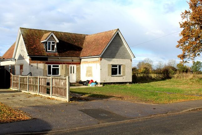 Thumbnail Detached house for sale in Halstead Road, Kirby Cross, Frinton-On-Sea