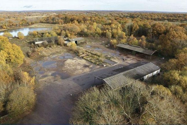 Thumbnail Land for sale in Bluebell Lakes, South Chailey, Lewes, East Sussex