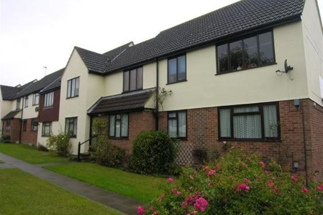 Thumbnail Property to rent in Baileys Court, Harlow, Essex