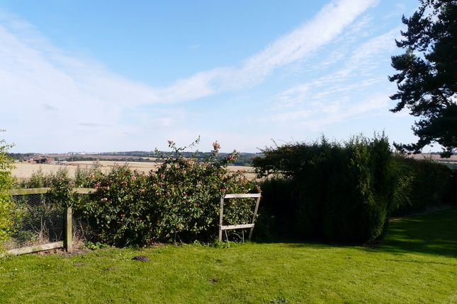 Thumbnail Bungalow for sale in Lilliestead Farm, Berwick Upon Tweed, Northumberland