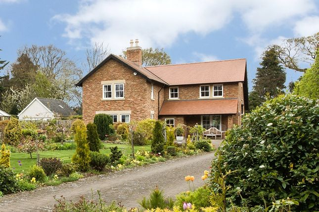 Thumbnail Detached house for sale in Achomer, Sandy Bank, Riding Mill, Northumberland
