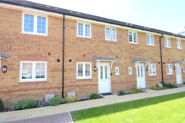 Thumbnail Terraced house to rent in George Palmer Close, Reading