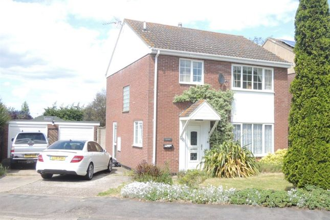 Thumbnail Property to rent in Colne View, St. Osyth, Clacton-On-Sea