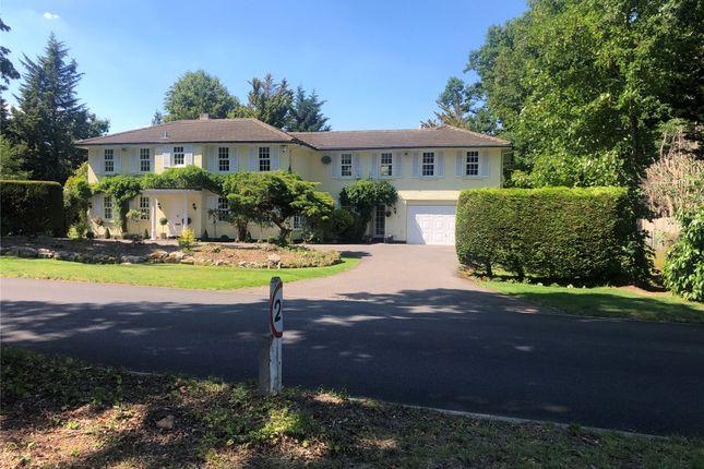 Thumbnail Detached house for sale in Kelvedon Avenue, Hersham, Walton-On-Thames, Surrey