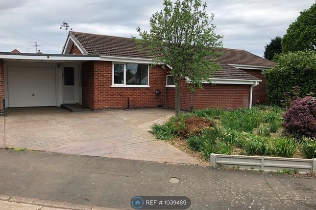 3 bed bungalow to rent in Belvoir Gardens, Grantham NG31