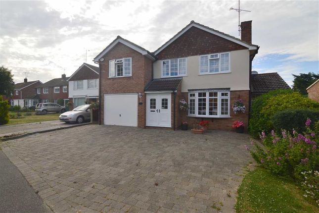 Thumbnail Detached house for sale in Plume Avenue, Maldon, Essex
