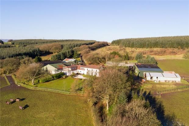 Thumbnail Equestrian property for sale in Neilston, Glasgow, East Renfrewshire