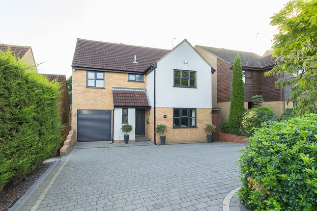 Thumbnail Detached house for sale in Rectory Avenue, Rochford