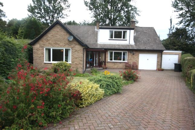 Thumbnail Bungalow for sale in The Grove, Guisborough