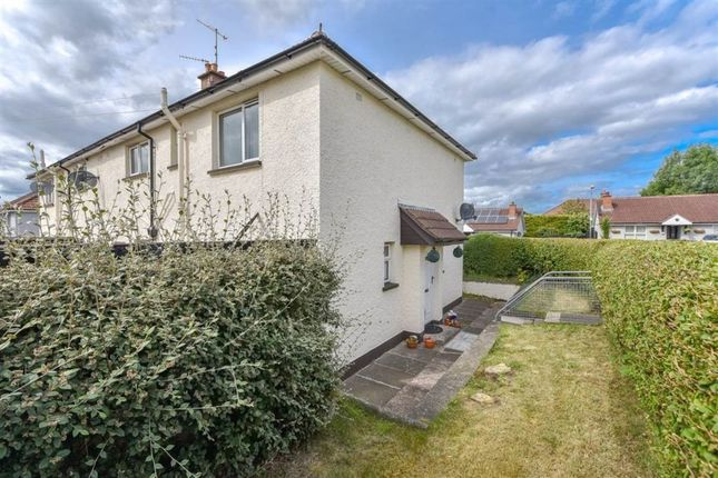 Thumbnail Flat to rent in Beech End, Holywood