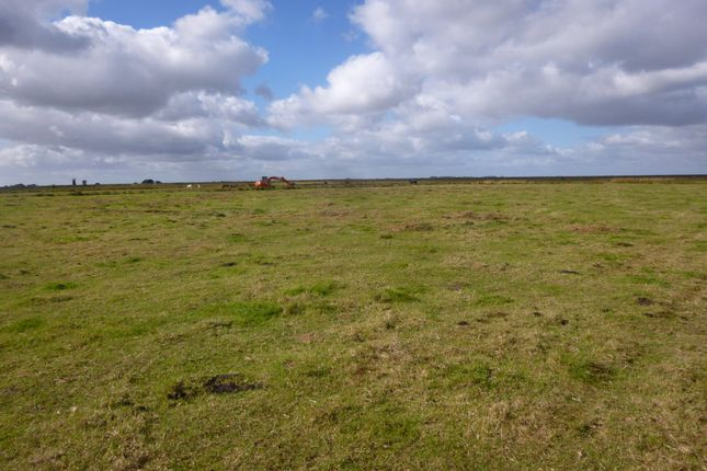 Thumbnail Farm for sale in Marsh Lane, Burgh Castle, Great Yarmouth