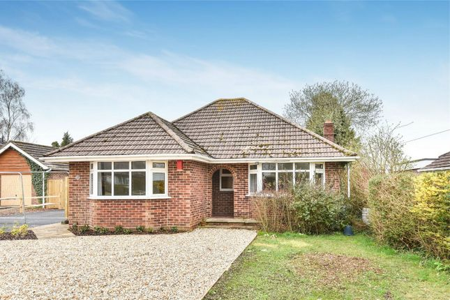 Thumbnail Detached bungalow to rent in South Wonston, Winchester, Hampshire