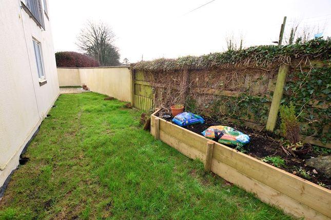 Garden-(2)-Psp of St. Maryhaye, Tavistock PL19