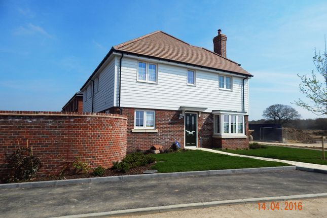Thumbnail Semi-detached house to rent in Goldfinch Drive, Finberry, Ashford