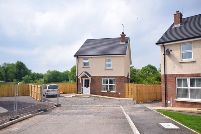 Thumbnail Detached house for sale in Hutton Drive, Beragh, Omagh